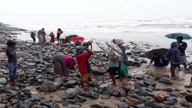 الهند. البحر