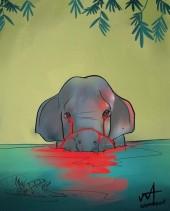 إطعام حبة أناناس محشوة بالمفرقعات لأنثى فيل حامل