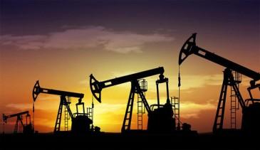 النفط ببلاش